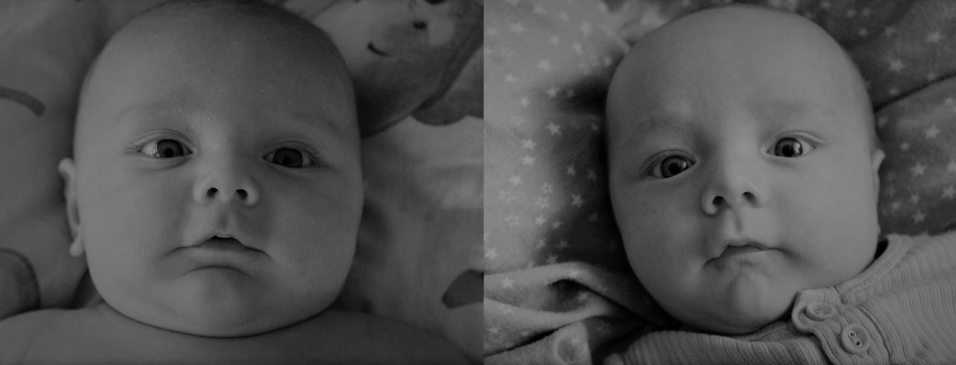 milan-og-elliot-twins